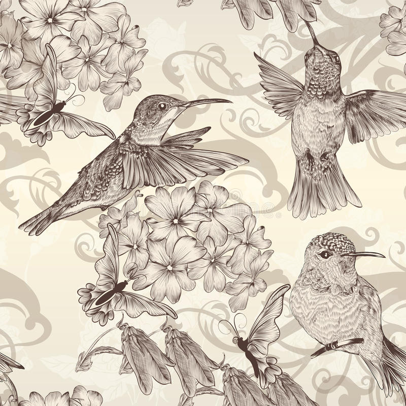 Beautiful vector seamless wallpaper with humingbirds in vintage royalty free illustration