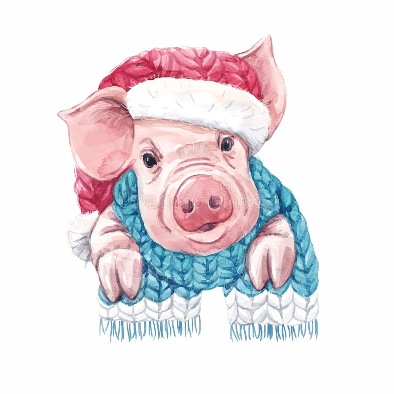 2019 year of the pig vector. Beautiful vector watercolor pig swine in christmas hat with scarf symbol of 2019 year vector illustration