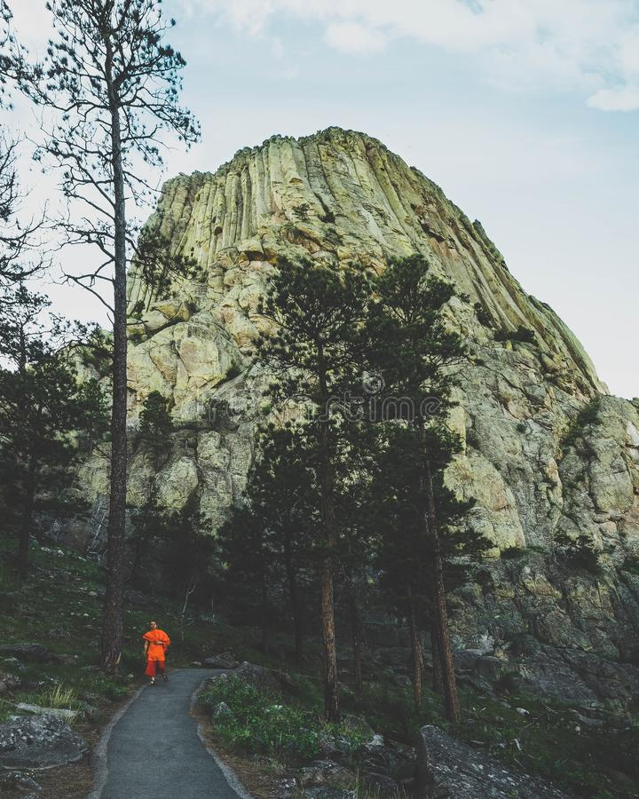 Beautiful vertical shot of person standing near trees near mountains. A beautiful vertical shot of person standing near trees near mountains royalty free stock photography
