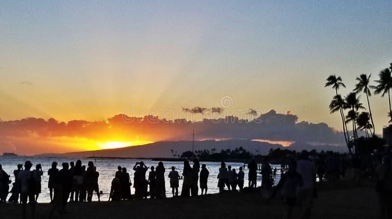 Beautiful vibrant sunset silhouette Palm trees blue sky Waikiki beach royalty free stock photos