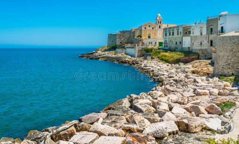 The beautiful Vieste on a sunny summer day. Gargano, Puglia Apulia, southern Italy. stock photos