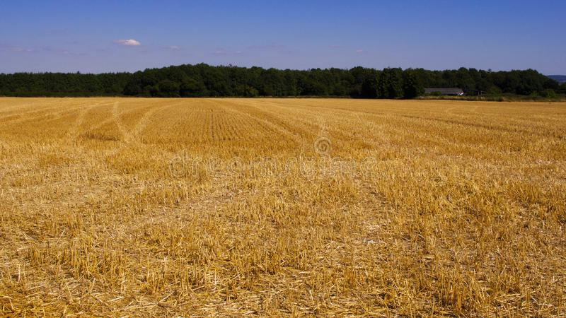 Beautiful view across recently harvested filed in summer                  western UK stock photography