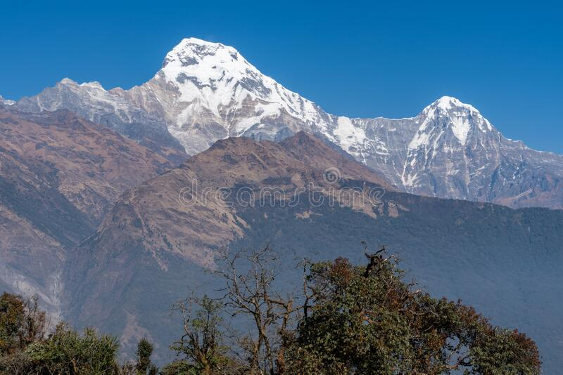 Beautiful view of Annapurna range with himchuli Pokhara nepal. Beautiful view of Annapurna range with himchuli Pokhara in Nepal royalty free stock images