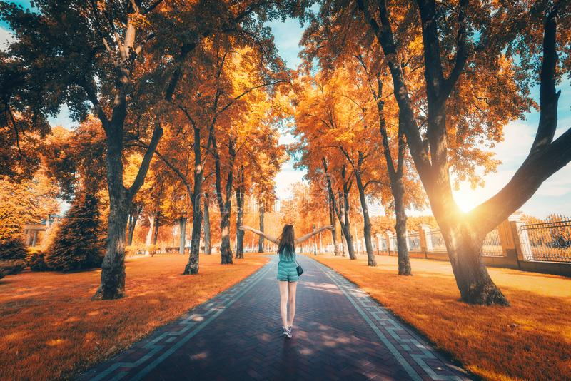 Beautiful view on the autumn trees alley and happy young girl royalty free stock photography