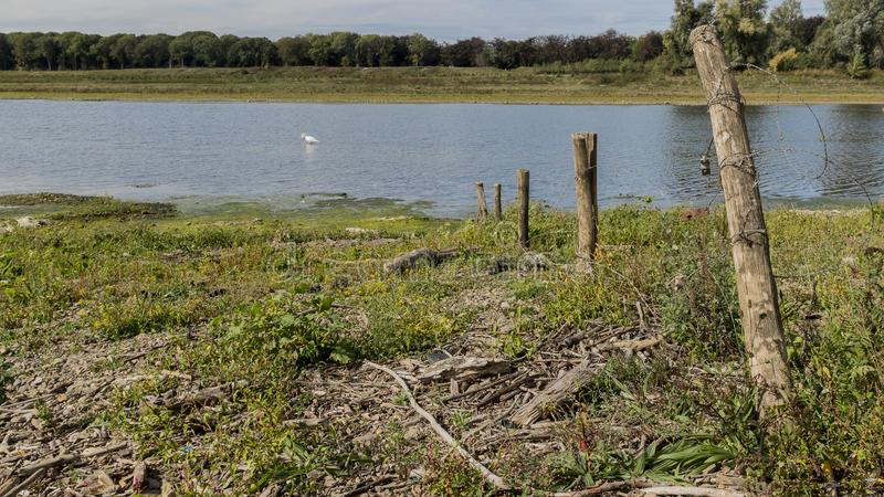 Beautiful view of a barbed wire fence with wooden poles and the river Maas. With blue waters and a swans in the background in river park Maasvallei South royalty free stock images