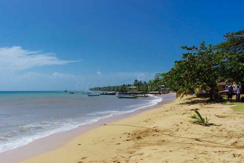 Morning landscape on a tropical Caribbean beach royalty free stock photos