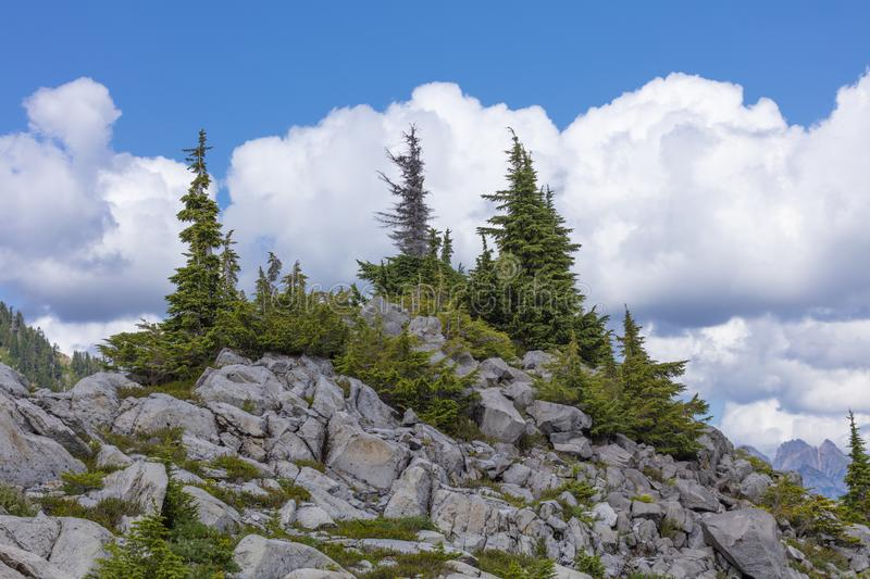 Beautiful view of blue cloudy skies, rocky mountains, and trees from Artis Point at Mount Baker Snoqualmie National Forest royalty free stock photo
