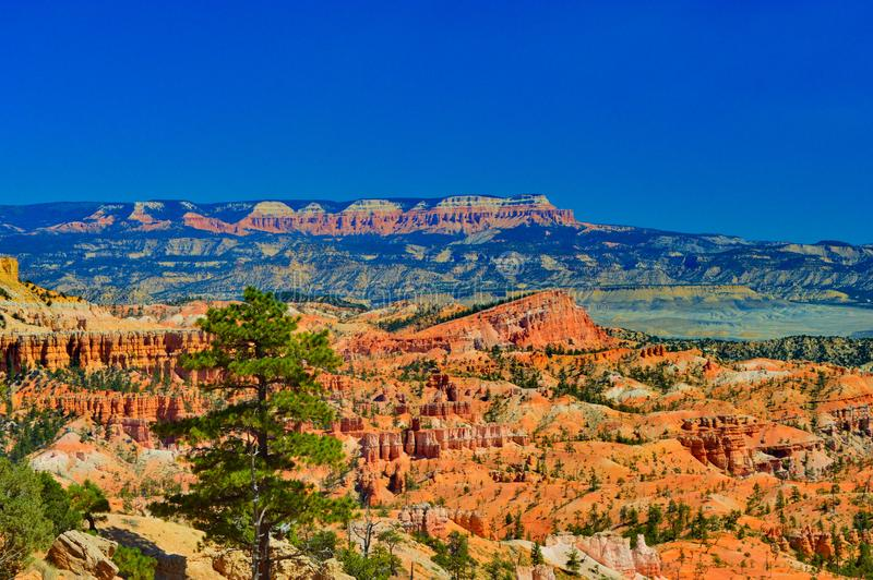 View at Bryce canyon national park royalty free stock images