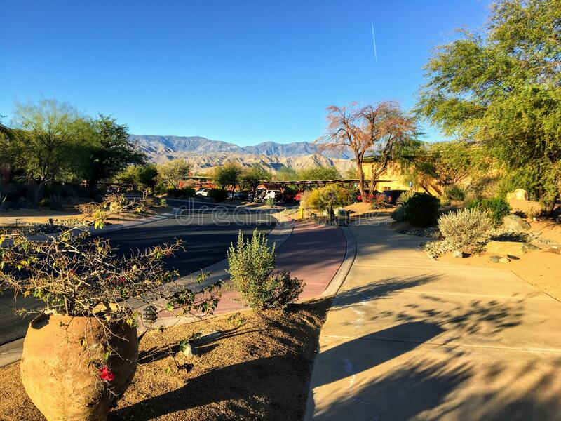 A beautiful view of a desert setting looking down a road and sidewalk with cactus and plants all around. And the mountains in the background, in palm springs stock photo