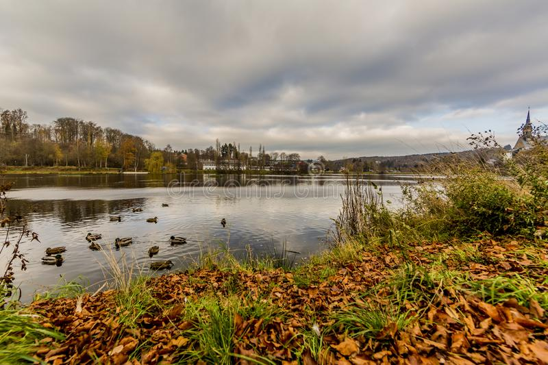 Beautiful view of the Doyards Lake with ducks in Vielsalm. On a wonderful and cloudy autumn day in the Belgian Ardennes stock image