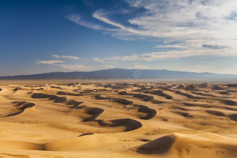 Beautiful view of the dunes of the Gobi Desert. Mongolia royalty free stock image