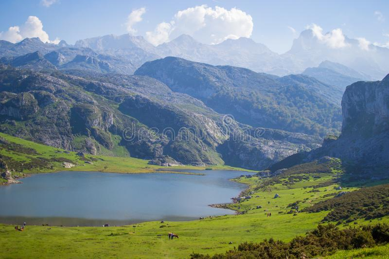 Beautiful view of Ercina Lake in Covadonga Lakes, Asturias, Spain. Green grassland with mountains at the background.  stock image