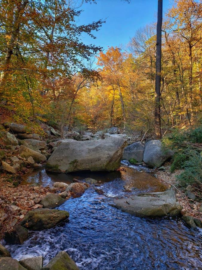 Autumn mountain stream landscape view. Blue Ridge Mountains in Fall. stock photo