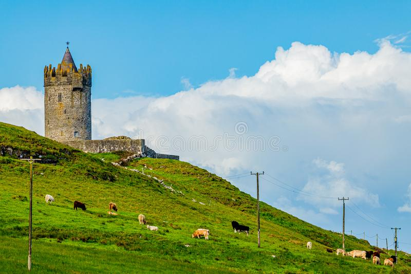 Beautiful view of a field with cattle grazing with the Doonagore Castle tower in the background stock photos