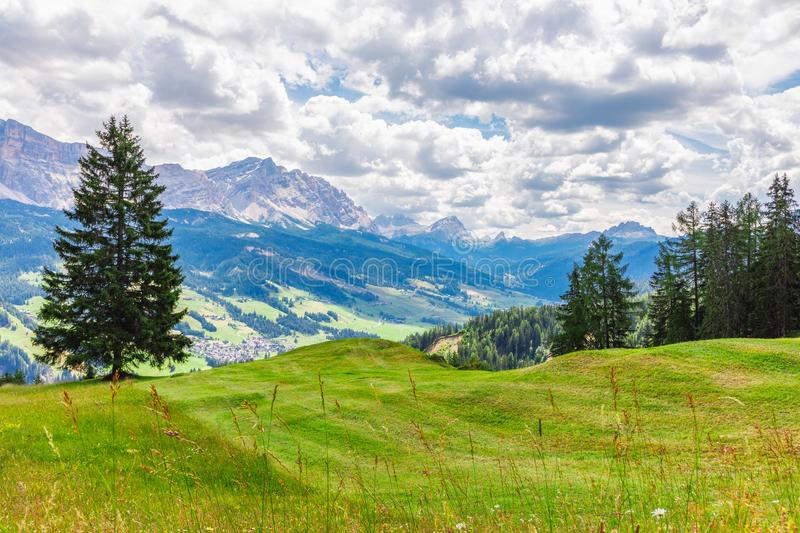 A beautiful view of a freshly cut alpine meadow. The peaks of the Italian Dolomites are visible in the background. Italian Alps, royalty free stock image