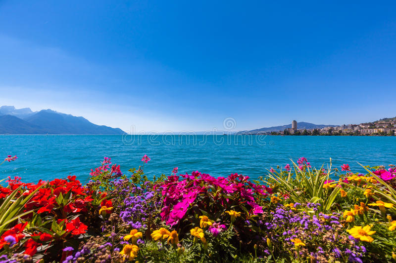 Beautiful view of Geneva lake and Montreux city. Beautiful view of the Alps, Geneva lake and Montreux cityscape with colorful flowers in foreground on a sunny royalty free stock photo