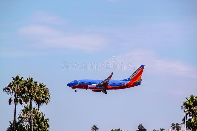 Beautiful view of huge airplane landing moment. Blue sky and green palm trees. San Diego. USA. royalty free stock image