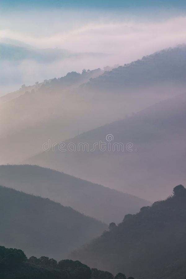 Misty hills in the morning. Beautiful view of the morning fog filling the valleys of smooth hills royalty free stock images