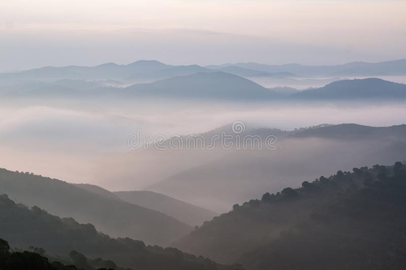 Misty hills in the morning. Beautiful view of the morning fog filling the valleys of smooth hills stock photo