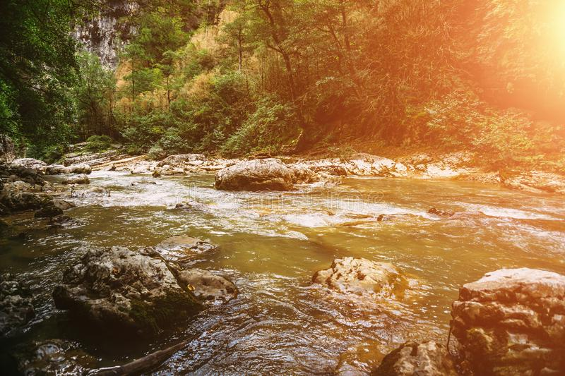 Beautiful view of mountain river in summer at sunset light stock photos