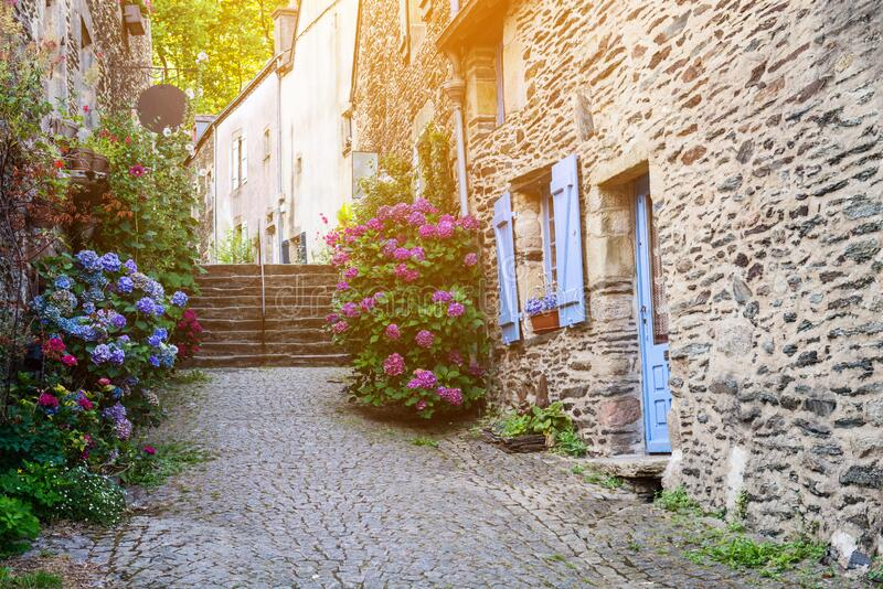 Beautiful view of narrow old street with historic traditional houses in old villge in Europe with blossom bushes of hydrangea stock images
