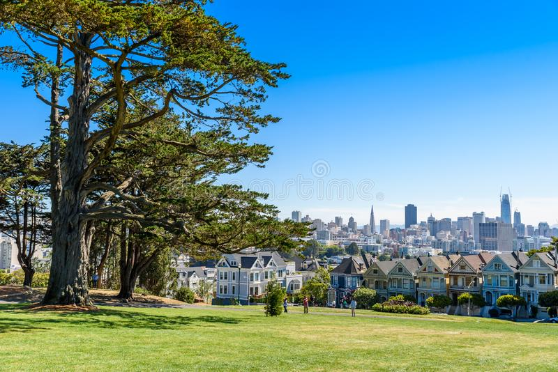 Beautiful view of Painted Ladies, colorful Victorian houses located near scenic Alamo Square in a row, on a summer day with blue stock photo