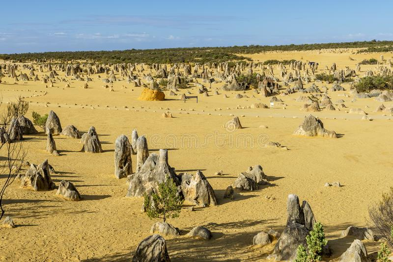 Beautiful view of the Pinnacles Desert before sunset, Western Australia royalty free stock photos
