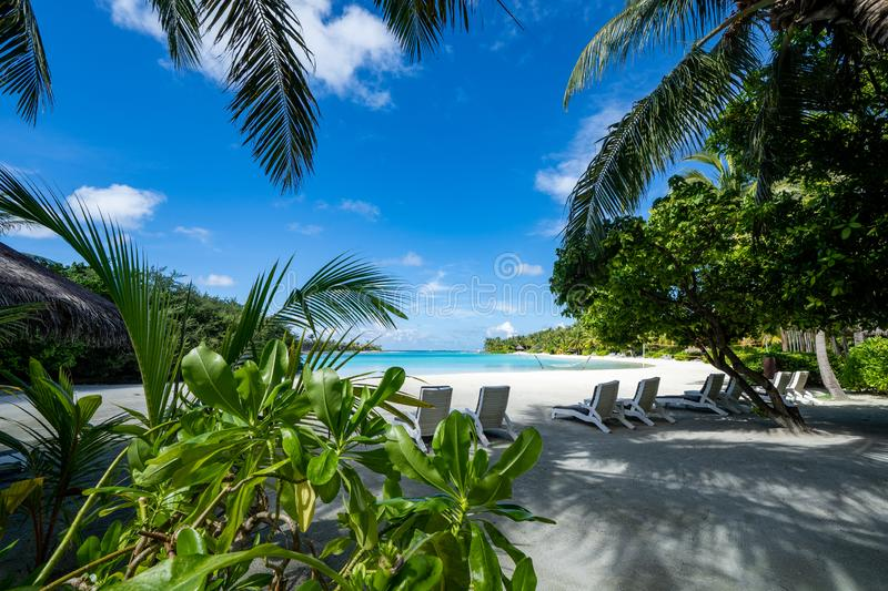 Beautiful view of a pristine white beach, turquoise water and palm trees at a resort in the Maldives.  royalty free stock images