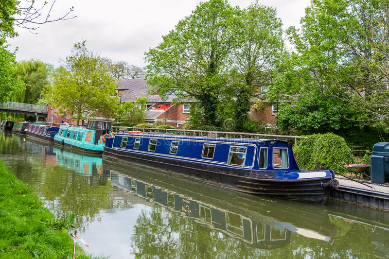 Beautiful view of the river Avon, Bath, England. Green landscape with a lot of trees, river boats and savage nature stock photo