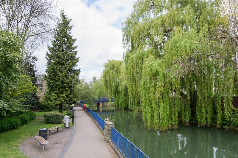 Beautiful view of the river Avon, Bath, England. Green landscape with a lot of trees and savage nature royalty free stock images