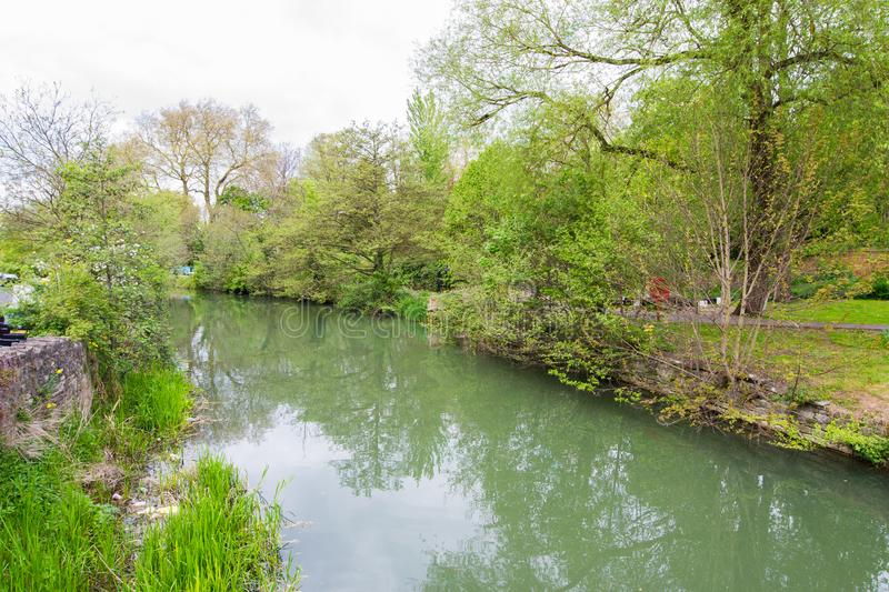 Beautiful view of the river Avon, Bath, England. Green landscape with a lot of trees and savage nature royalty free stock photos