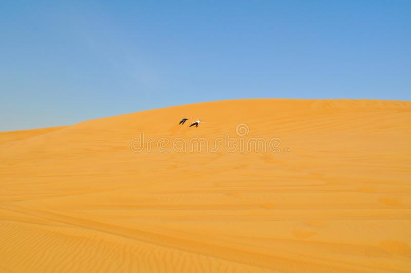 Two persons cross the desert. Active holiday in Dubai. Boundless sandy desert royalty free stock photography