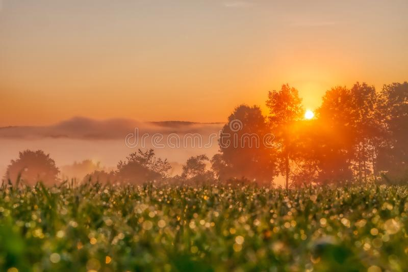 Beautiful view of the sunrise in Venango Valley, Northwest Pennsylvania. The beautiful view of the sunrise in Venango Valley, Northwest Pennsylvania royalty free stock image