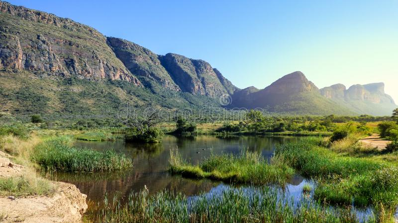 Beautiful view of swamp with hippos and a mountain range stock image