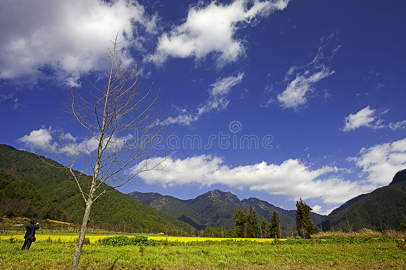 Download A Beautiful View Of The Taiwan Alps Stock Image - Image: 26948447
