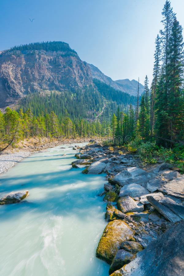 Takkakaw Falls, CANADA, Yoho National Park, British Columbia, Canada stock images
