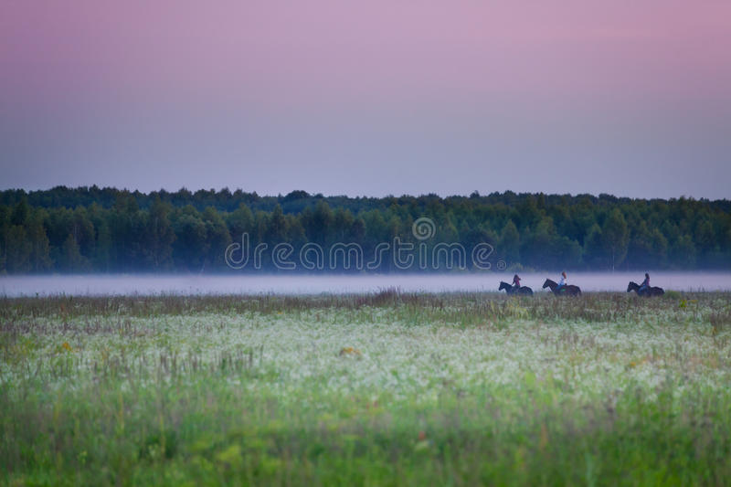 Beautiful view of three equestrians riding in fog. Gy field at sunset stock photo