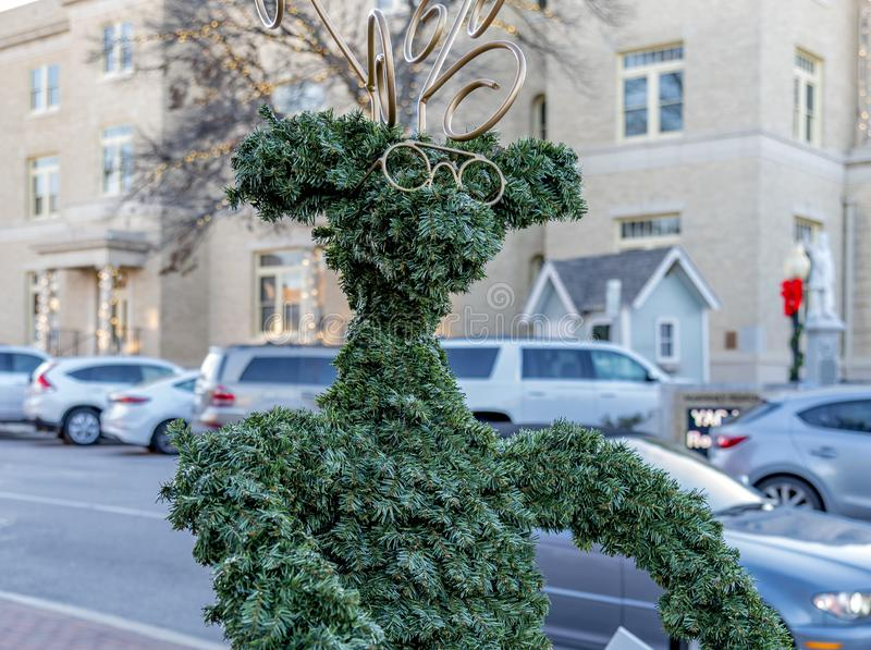 Beautiful view of a tree shaped liked a person captured in McKinney, Texas, United States. MCKINNEY, TEXAS, UNITED STATES - Dec 28, 2018: A beautiful view of a stock images