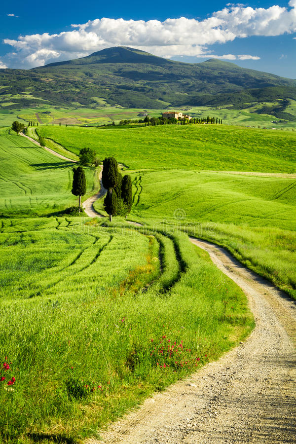 Beautiful view of the valley in Tuscany stock photography