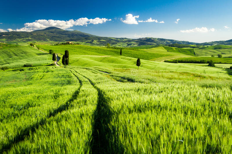Beautiful view of the valley in Tuscany royalty free stock photo