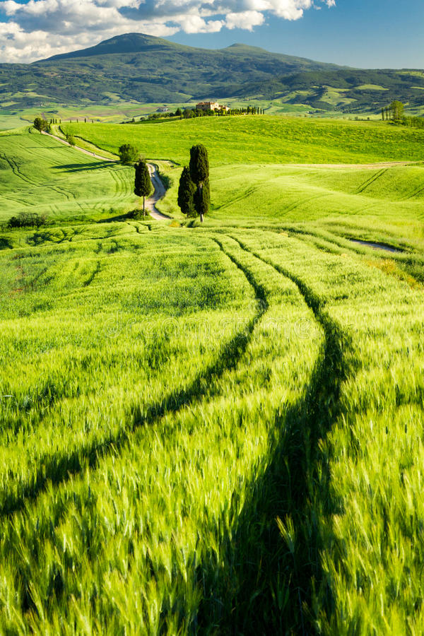 Beautiful view of the valley in Tuscany royalty free stock image
