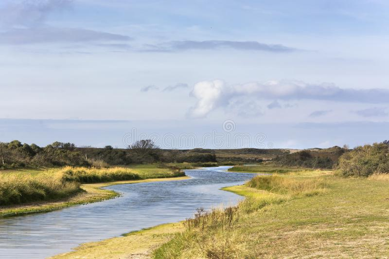 Beautiful view on the Waterleidingduinen, a coastal dunes area in the neighbourhood of Amsterdam. In this area the drinkingwater for the inhabitants of stock photos