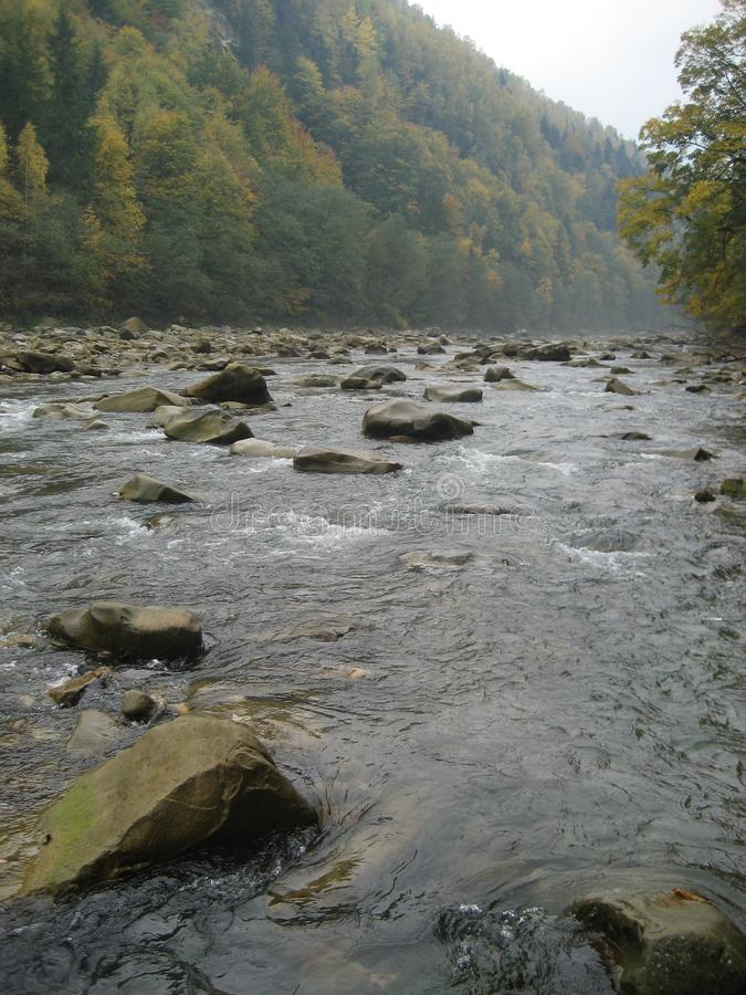 Beautiful views of the mountain river in the autumn. All the colors of the golden autumn royalty free stock photography