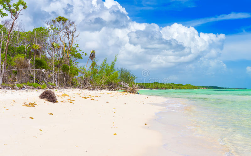 Download Beautiful Virgin Beach At Coco Key In Cuba Stock Photo - Image of coco, romantic: 32371500
