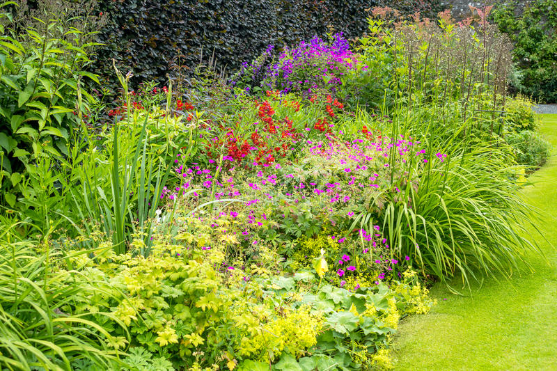 Beautiful walled garden. In the summer royalty free stock photo