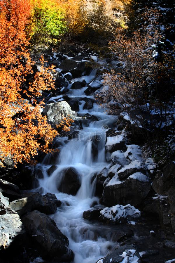 Water falls in Colorado with fall foliage stock photography