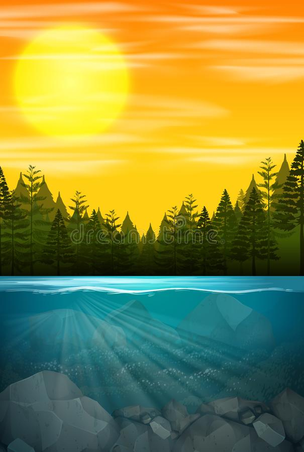Beautiful water forest scene vector illustration