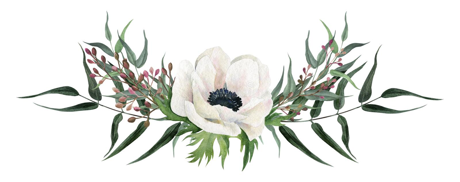 Beautiful watercolor arrangement, hand drawn illustration. Anemones. royalty free illustration
