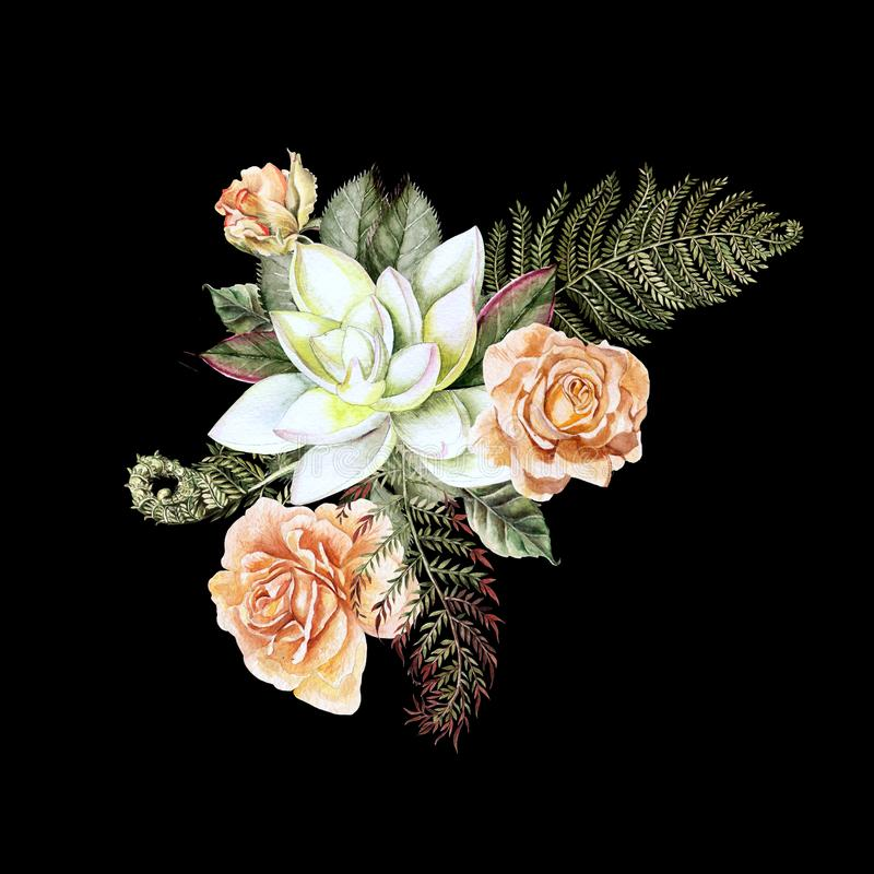 A beautiful watercolor bouquet with rose and succulent. With leaves and fern. Illustration stock illustration