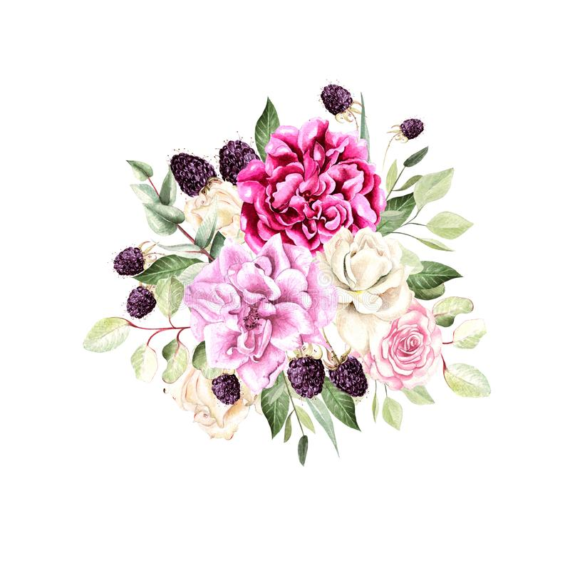 A beautiful watercolor bouquet with roses and peony flowers, eucalyptus and blackberries. stock illustration